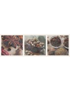Briosa INSERTO Herbs B 20 x 60