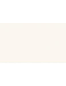 Almera Ceramica Biselado white GMS751501B 10x20