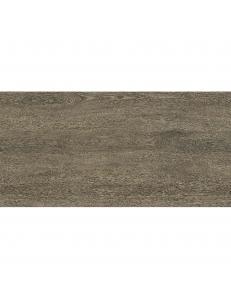 Almera Ceramica Wooden PF61216AJ 60x120