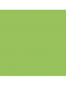 Almera Ceramica Green GMM40160P 60x60