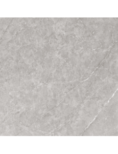 Argenta Modico Grey  60х60