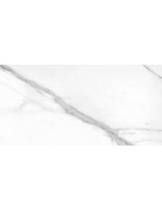 Argenta  Tholos White Polished 120х260