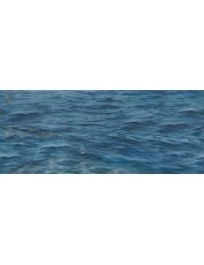 Декор (25х60) SEA CENTRO