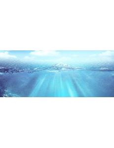 Декор (25х60) WAVE 1 CENTRO