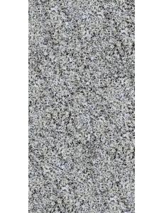 Pokostovka серый