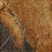 Imola Kalahari 50MC