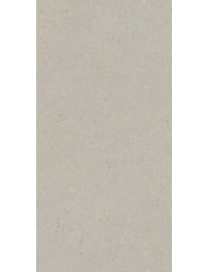 Gray серый светлый 12060 01 071