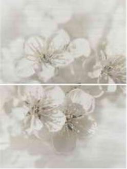 Плитка Mirta декор квіти 45x60