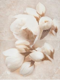 Плитка Nizza квітка декор 60х45