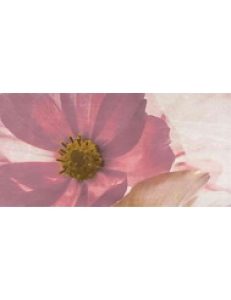 Stone rose inserto flower A 29,7X60