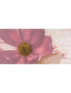 Stone rose inserto flower A 29,7X60