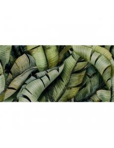 Paradyz Leaf В Inserto Uniwersalne 30 x 60