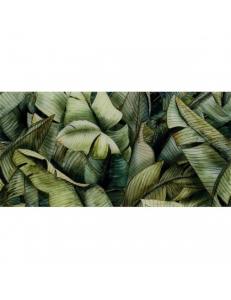 Paradyz Leaf A Inserto Uniwersalne 30 x 60