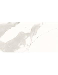 Stevol Calacatta Oro glossy 60x120