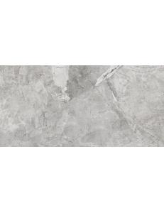Stevol Excelle grey 60x120