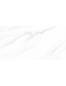 Stevol Calacatta 60x120