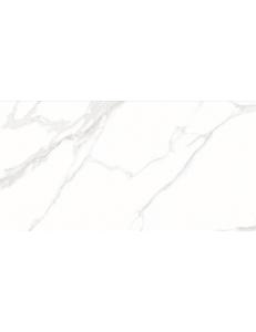 Stevol Staturio calacatta 60x120