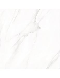 Stevol Calacatta 60x60