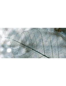 MAGIA декор серый / Д 61 071