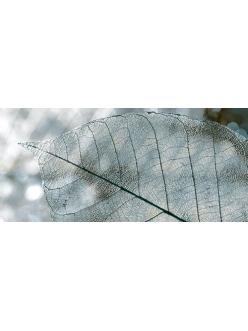 Плитка MAGIA декор серый / Д 61 071