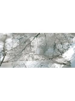 Плитка MAGIA декор серый / Д 61 071-1