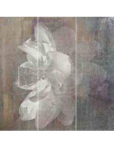 Manteia Colour PANEL A 3 x 20 x 60