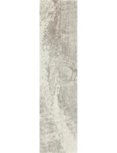 Trophy Bianco 15 x 60